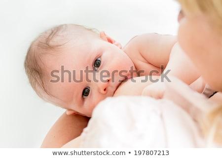 close up of baby sucking mother breast Stock photo © dolgachov