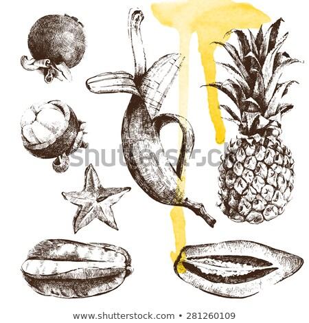 Hälfte geschält Bananen Hand gezeichnet Skizze Symbol Stock foto © RAStudio