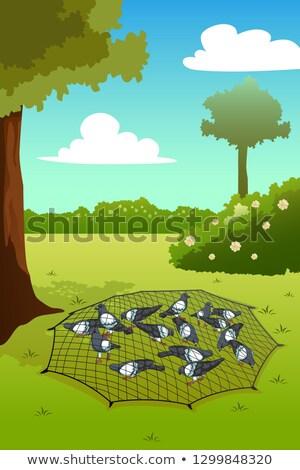 Uwięzione ziemi ilustracja ptaków netto Zdjęcia stock © artisticco