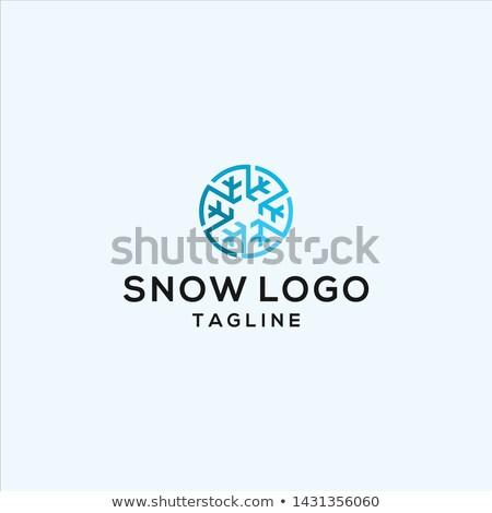 Sneeuwvlok vector logo symbool element ontwerp Stockfoto © blaskorizov