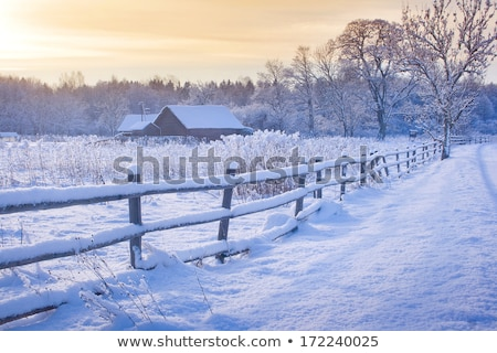 Wood cabin in the snow field Stock photo © colematt