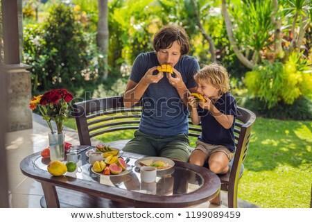 twee · picknick · foto · park · broers - stockfoto © galitskaya