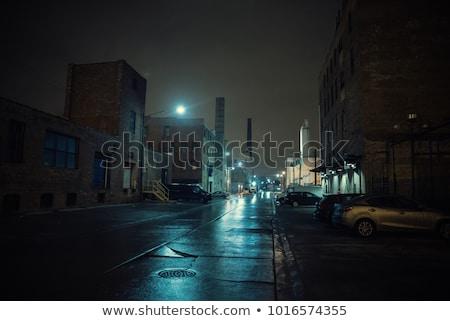 éjszaka esik az eső jelenet illusztráció víz fa Stock fotó © colematt