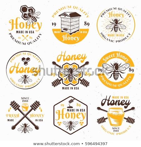 Stock fotó: Szín · klasszikus · méz · embléma · címkék · jelvények
