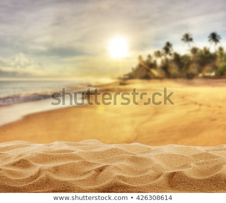 Evening sunset at sandy beach of paradise island Stock photo © LoopAll