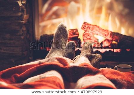 Haard brand verwarming decoratie home vector Stockfoto © robuart