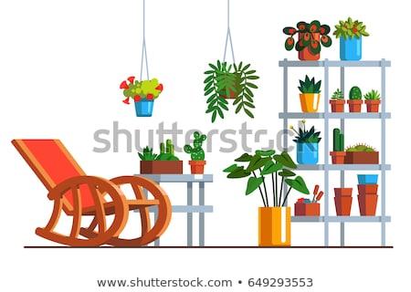 Houseplant in Orangery, Greenhouse Shelf Flowers Stock photo © robuart
