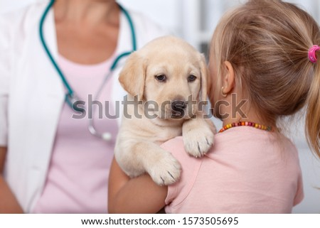 little girl holding her puppy dog at the veterinary doctor offic stock photo © ilona75