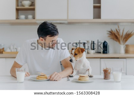 Image of brunet unshaven European man spends free time together with pedigree dog, eat pancakes in k Stock photo © vkstudio