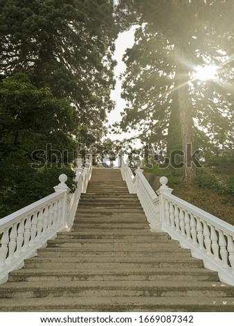 Stock photo: A footpath in a place for leisure and recreation. Untouched by man nature
