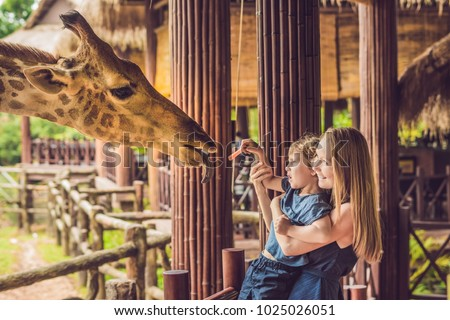 Stock photo: Happy mother and son watching and feeding giraffe in zoo. Happy family having fun with animals safar