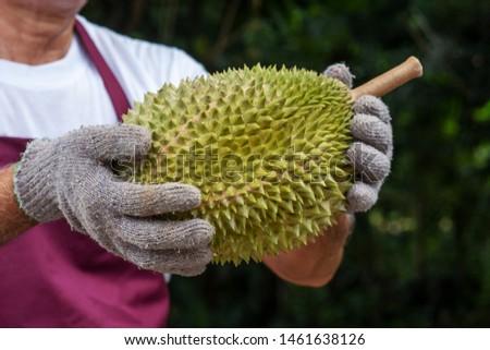 Jeans rei mão homem verde trabalhador Foto stock © szefei