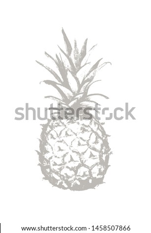 pineapple pencil drawing icon tropical exotic fruit shape pattern outline icon vector graphics stock photo © essl