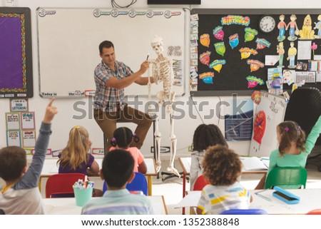 Vrouwelijke leraar uitleggen anatomie Stockfoto © wavebreak_media