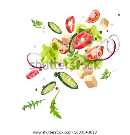 Vegetariano piatto preparazione vettore realistico bianco Foto d'archivio © frimufilms