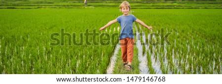 Touristiques garçon rizière enfants enfants Photo stock © galitskaya