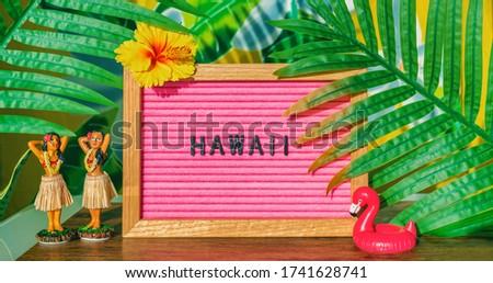 Havaí viajar retro assinar dança bonecas Foto stock © Maridav