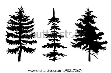 Black silhouette of fir-tree, christmas tree, simple raster icon, nature concept, black tree Stock photo © robuart