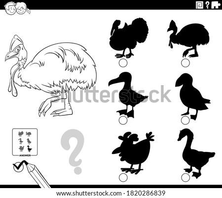 Sombras tarefa desenho animado flamingo animal Foto stock © izakowski