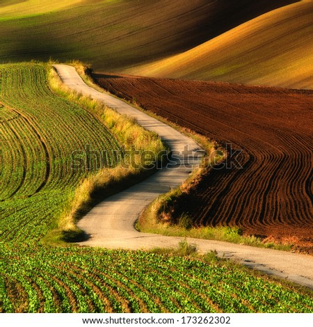 spring landscape with fields in southern moravia czech republic stock photo © phbcz