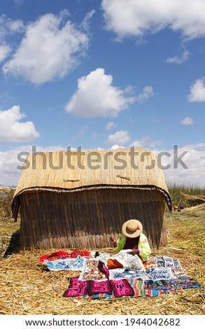 Kadın dikiş Peru Bolivya çalışmak doğa Stok fotoğraf © jirivondrous