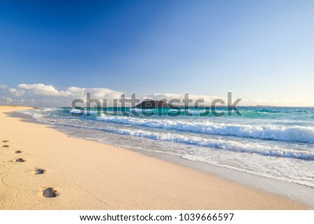 白砂 ビーチ カナリア諸島 足跡 スペイン 島 ストックフォト © nito