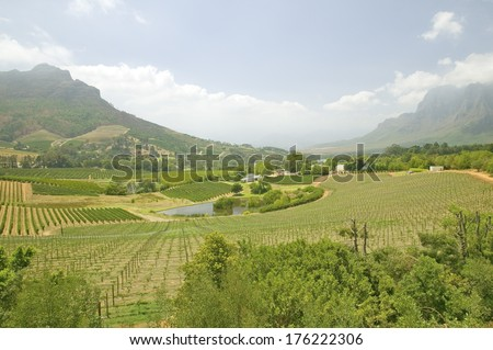 Mountains in Stellenbosch wine region, outside of Cape Town, Sou Stock photo © tang90246