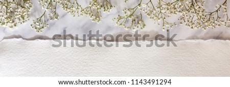 Virágmintás egyezség fehér préri klasszikus kancsó Stock fotó © sarahdoow
