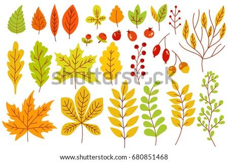 oak acorn is flat or cartoon style isolated on white background vector illustration stock photo © lucia_fox