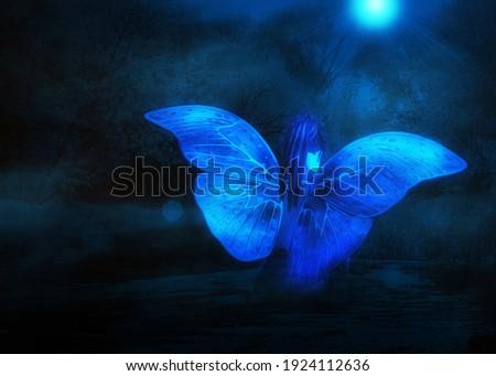 belo · misterioso · noite · paisagem · pequeno · menina - foto stock © ukasz_hampel