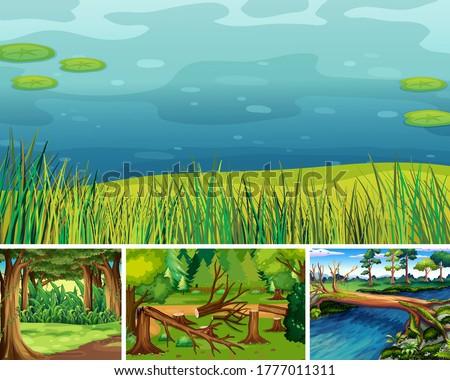 Patru diferit natură scena pădure mlaştină Imagine de stoc © bluering