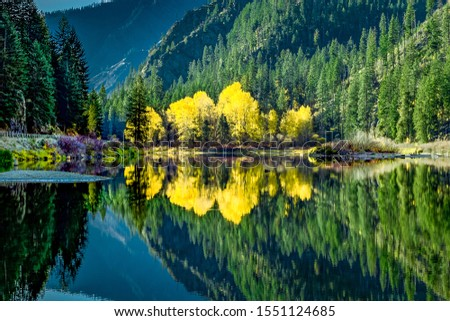 fall colors tree reflections wenatchee river stevens pass leaven stock photo © billperry
