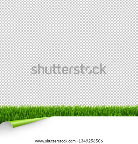green grass border with white paper and corner transparent backg stock photo © barbaliss
