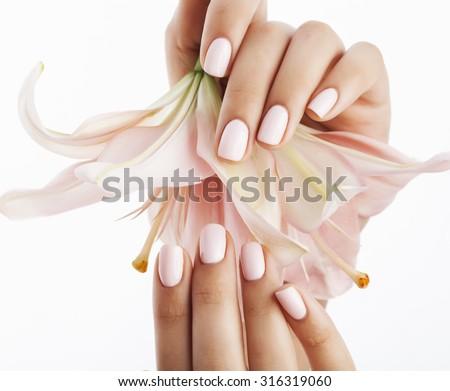 Schoonheidssalon handen manicure roze bloem Stockfoto © serdechny