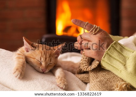 Woman knit in front of the fireplace with her exhausted kitten s Stock photo © ilona75