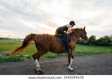 zadel · vrouw · jonge · hoed · alleen - stockfoto © pressmaster