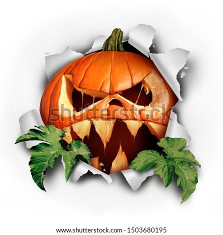 assustador · assustador · halloween · abóbora · preto · zangado - foto stock © Wetzkaz