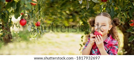 Cute little preschooler girl eating an apple on beautiful autumn Stock photo © Lopolo