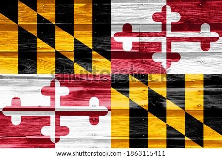 Vlag Maryland grunge houten textuur nauwkeurig Stockfoto © vepar5