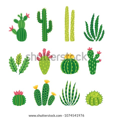 Cactus Stock photo © Calek