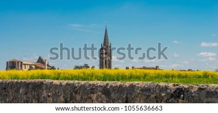 Vineyard at spring, flowers colza, and village of saint emilion Stock photo © FreeProd