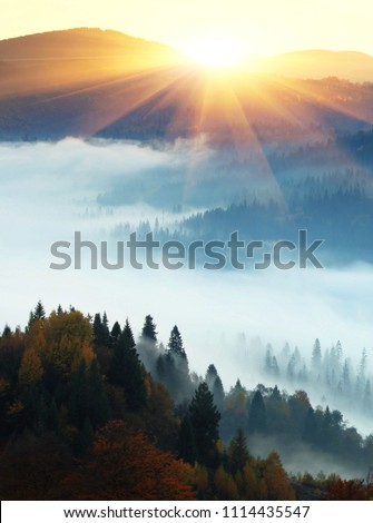 autumn landscape in the mountains with the first rays of the sun stock photo © kotenko