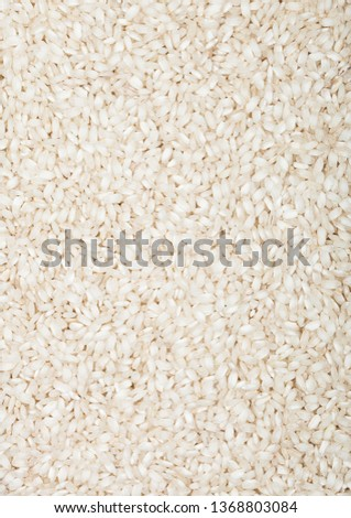 fresh raw organic arborio risotto rice healthy foodmacro texture stock photo © denismart