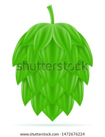 érett zöld sör előkészítés hozzávaló vektor Stock fotó © konturvid
