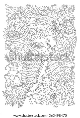 Papağan kart vektör hat sanat Stok fotoğraf © frimufilms