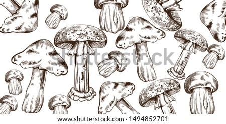 Mushrooms vector line art pattern. Autumn fall veggies backgrounds Stock photo © frimufilms