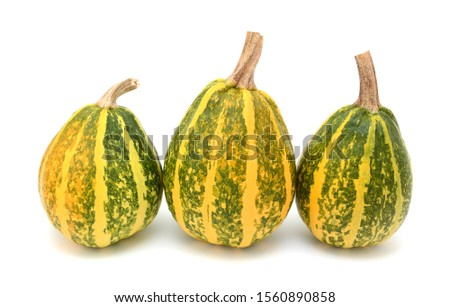 3  緑 黄色 縞模様の 秋 ストックフォト © sarahdoow