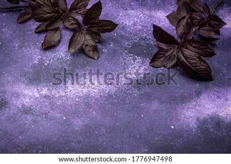 Purple violet cosmic background with dark leaves Stock photo © furmanphoto