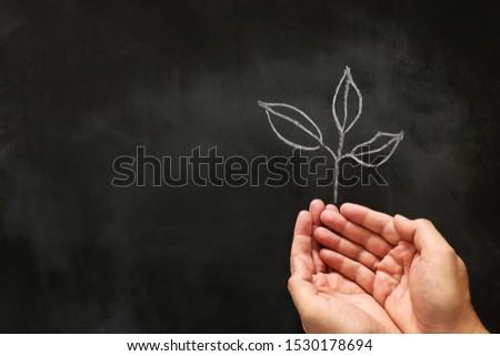 зеленый школы доске мелом совета прибыль на акцию Сток-фото © limbi007
