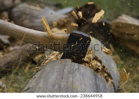 ax chopping a stub Stock photo © taviphoto